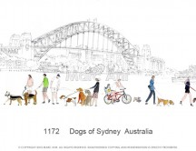 C images panoramas - 1172     Dogs of Sydney  Australia